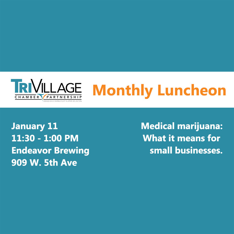 TVCP January Monthly Luncheon