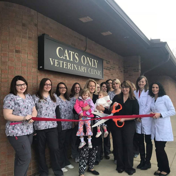 Cats Only Veterinary Clinic Ribbon Cutting
